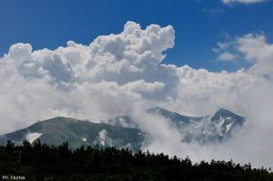 朝日岳山頂から見た白馬岳と雪倉岳